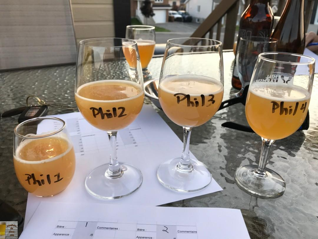 Dégustation à l'aveugle 2: IPA et bières sûres
