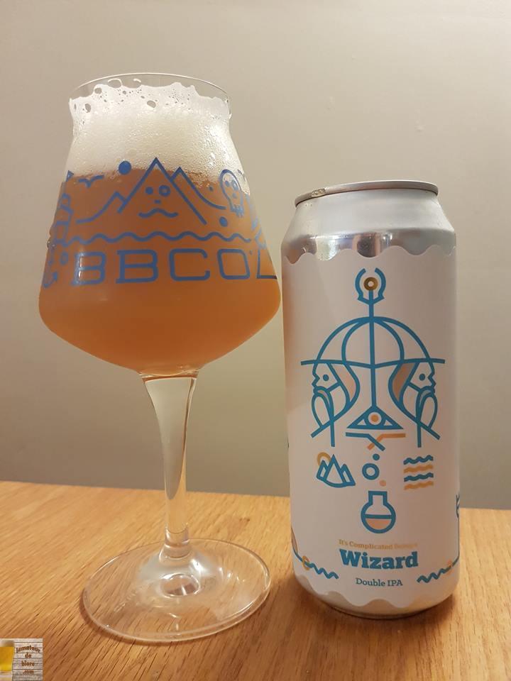 It's Complicated Being A Wizard de Burlington Beer Co. (Vermont)