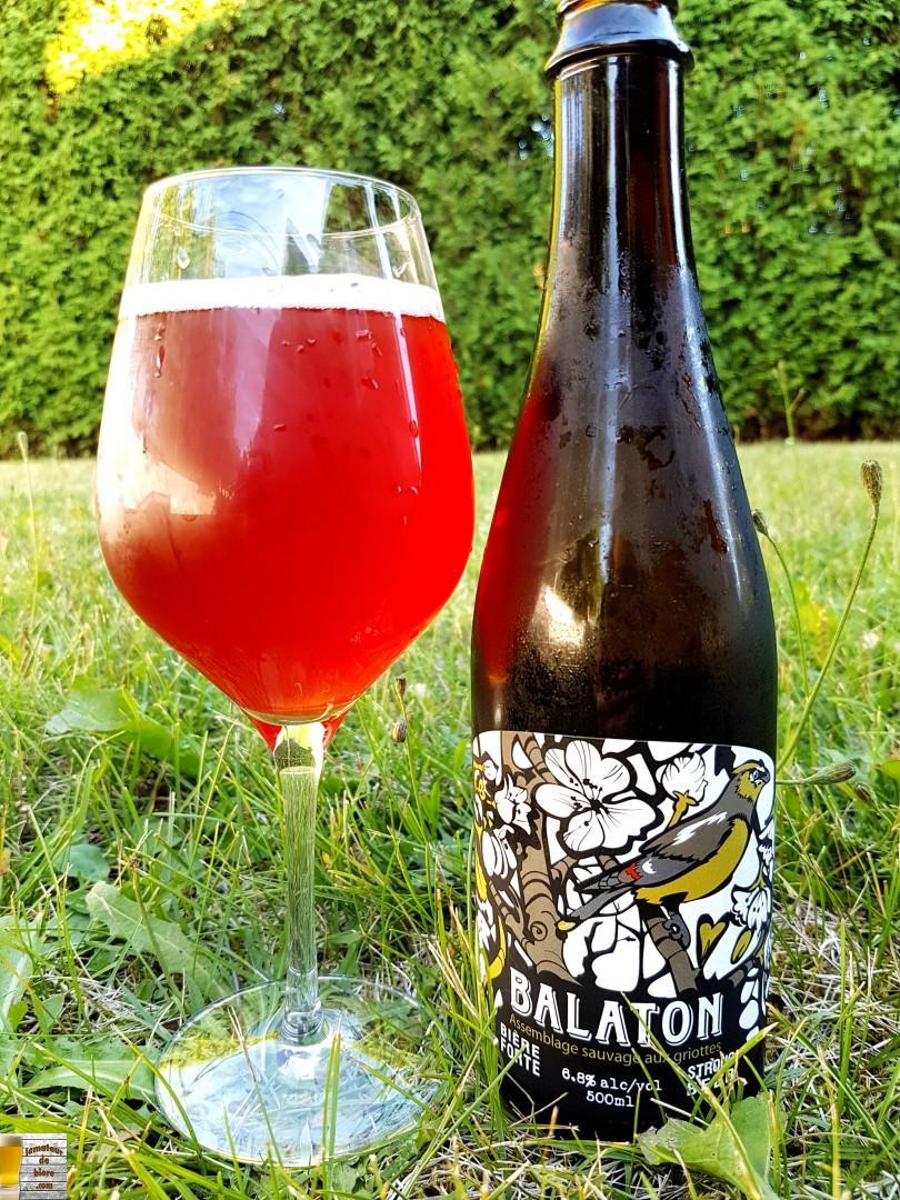 Balaton du Castor