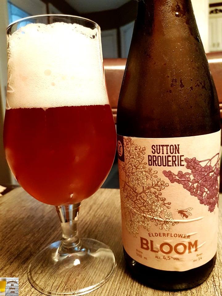 Elderflower Bloom de Sutton Brouërie